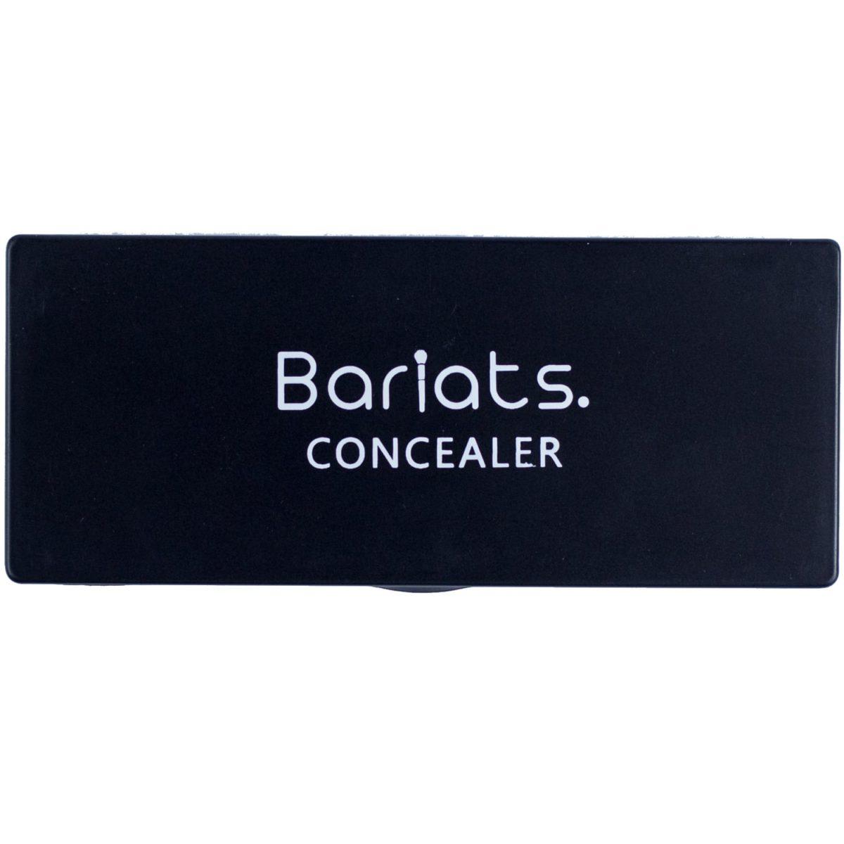 bariatsconcealerpalette2